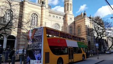 European Karate Championship in Budapest